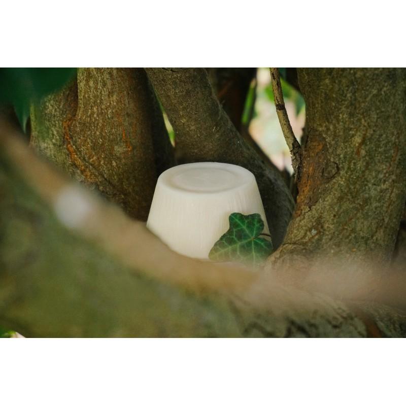 SolidOlio® Exotic Sandalo- Amaro e Forte - Zero Waste